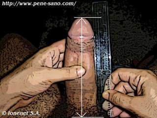 medir-el-pene11